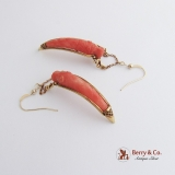Vintage Carved Coral Claw Form Earrings 14 K Gold