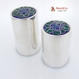 .Floral Enamel Salt And Pepper Shakers Sterling Silver ONC 1970