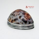 .Irish Snuff Box Cowrie Shell John Egan 1800 Sterling Silver PHR